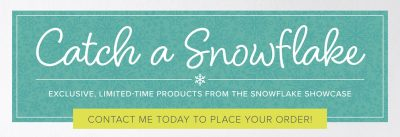 Catch a snowflake Promotion