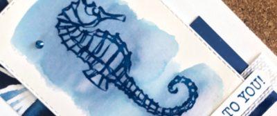 Seahorse Swaps