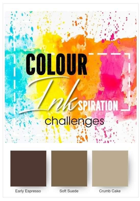 Colour Seatch