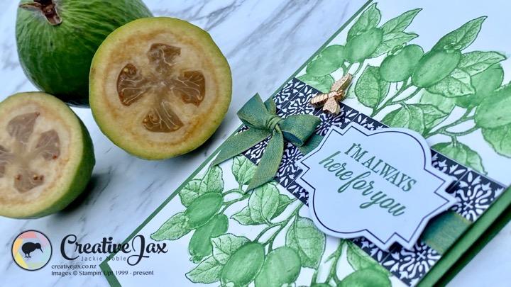 Botanical Prints - Feifoa